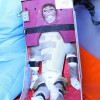 Iran Shoots Monkey Into Space, Claims It Came Back Alive