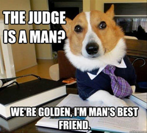 mans-best-friend-meme